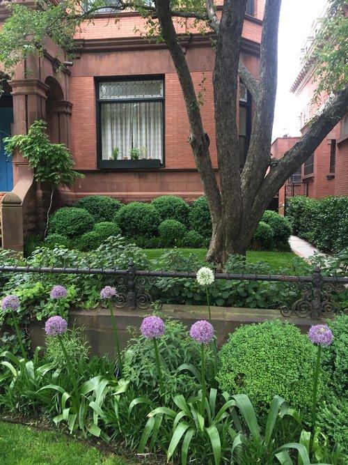 Brook Landscape Gardens Brooklyn Resident