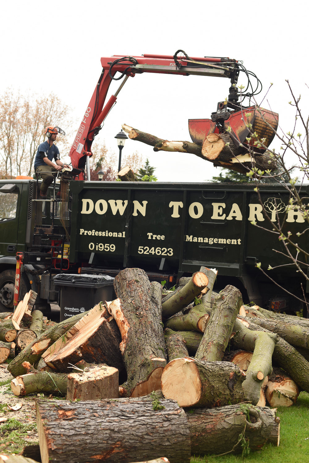 Tree Surgeon and Maintenance Services in Oxted