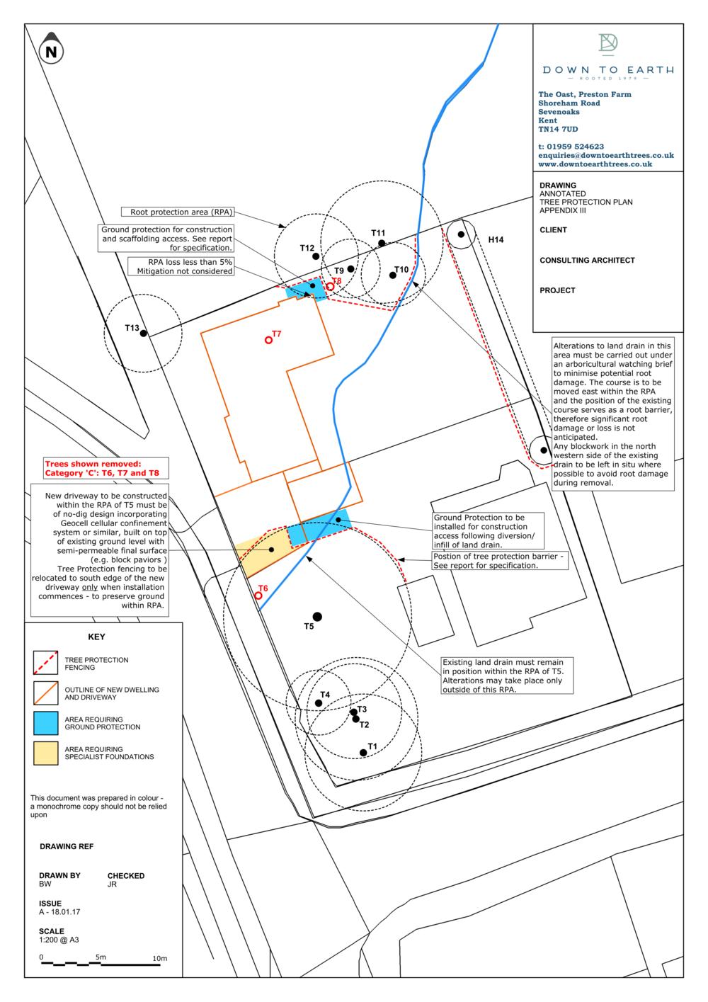 Tree Protection Plan BS5837 Survey Report London Kent