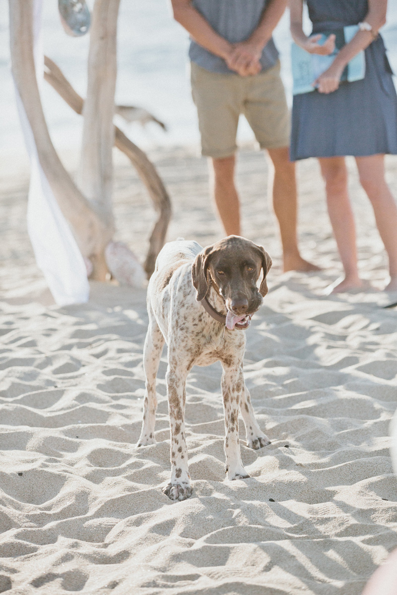 vividoccasions.com | Pachamama Hotel Weddings in Mexico | Melissa Fuller Photography | Vivid Occasions Wedding Designer in Cabo San Lucas _ (38).jpg