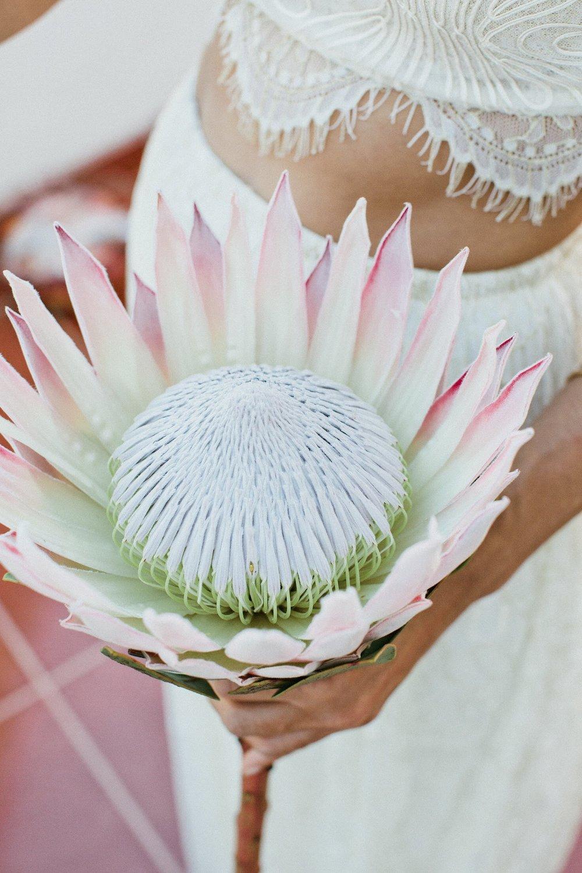 Florals: DIY by Bride & Groom