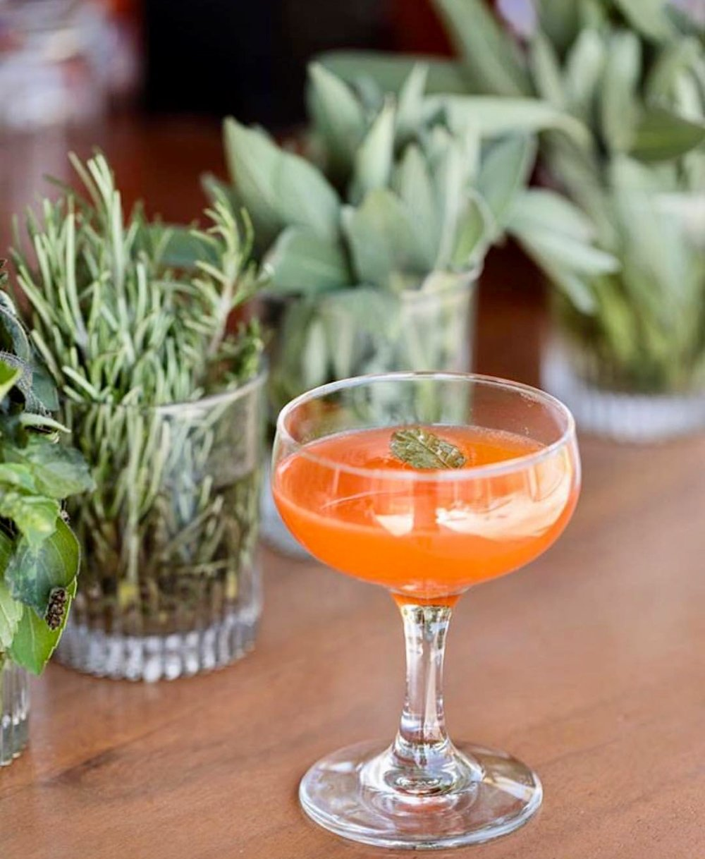 Photography:  Acre Baja  / Venue:  Acre Baja   Reina de la Baja: Aperol, orange, lime, sparkling wine & damiana tincture