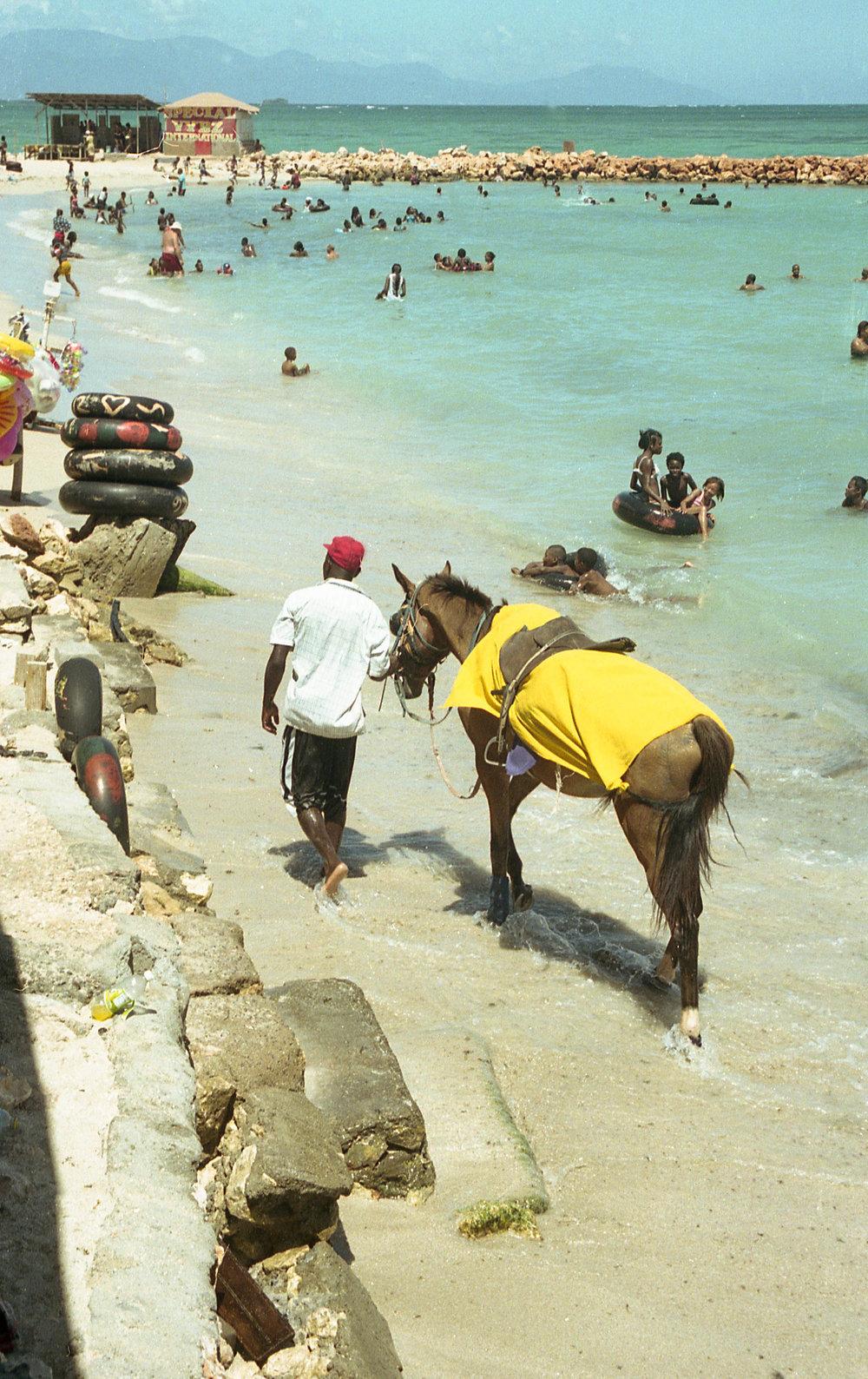 11. Beach Horse.jpg