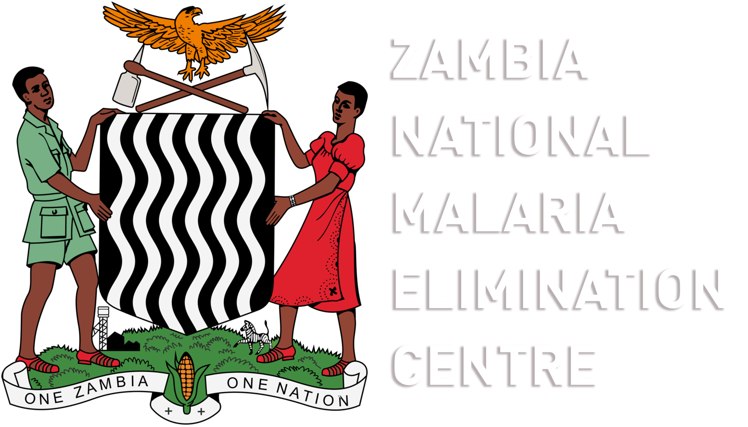 Zambia National Malaria Elimination Centre