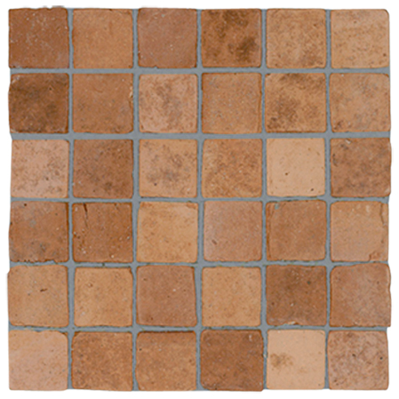 BIO mosaic