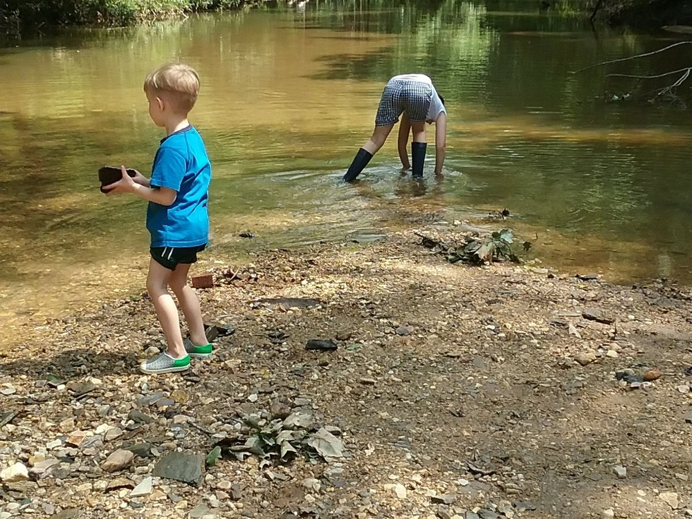 Rock Discovery  Rocks are lively at Blue Heron! Collect rocks along our trails and creek and sort your collection based on color, texture, hardness and more. Notice how rocks and soils are changed in the dynamic environment of Nancy Creek.