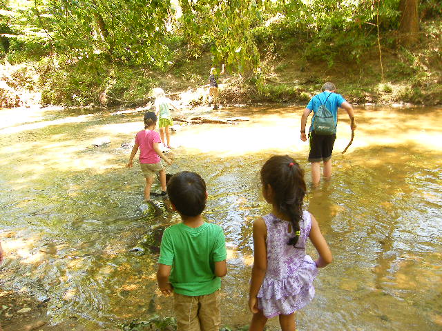 Creek Walk  A walk in our creek is the perfect way to learn about rocks, soils, and fossils! We'll seek out information about each as we enjoy the cool water. We'll take along a trash bag and clean up our waterway as we go!