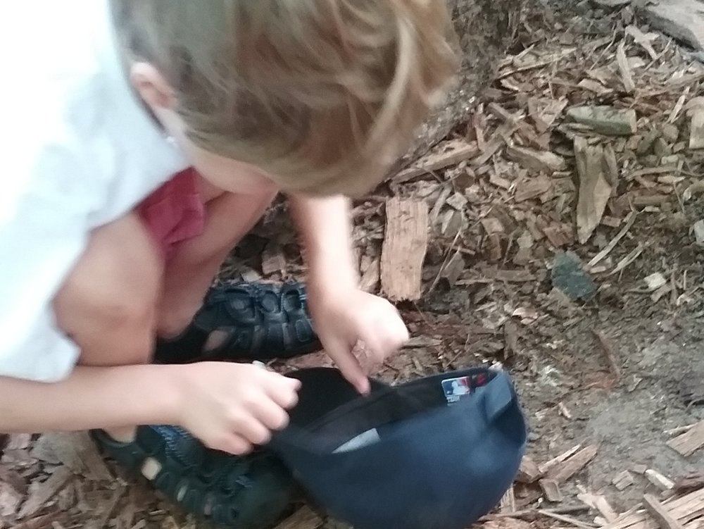 Soil Discovery  Dig in to soil! By getting our hands dirty in different parts of the Preserve, we'll uncover the properties of soils. Children will collect different soil types to observe and describe, and compare the soil of 2 different habitats.