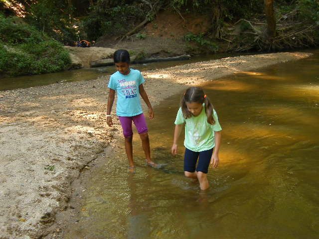Water Discovery  Is the water clean in our creeks? How does the weather impact the water in our creek? We'll explore these questions as we test our water quality using simple methods.