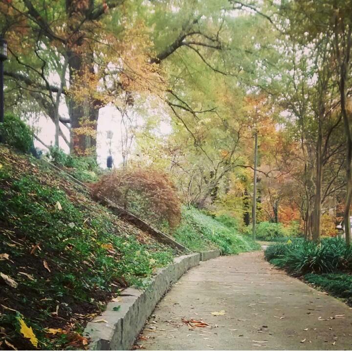 fall path3.jpg