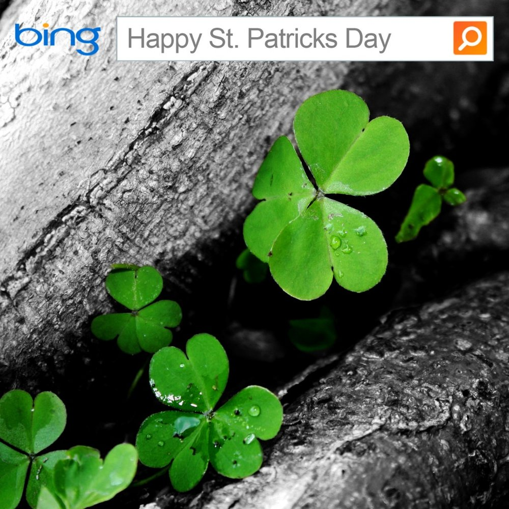 Bing: St.Patricks Day   Role: (Photography/Design)