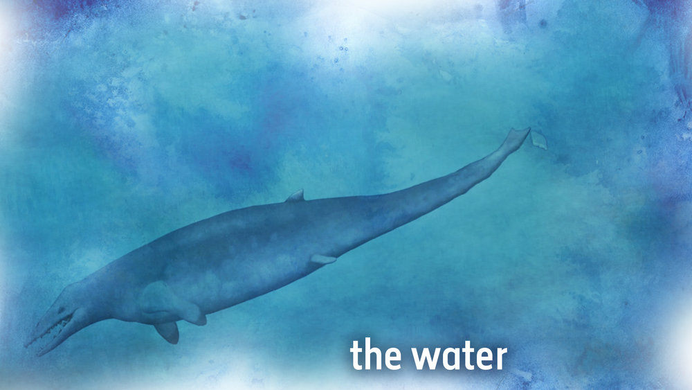 12 - the water.jpg