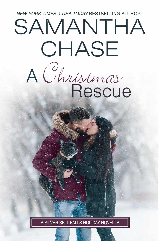 A Christmas Rescue