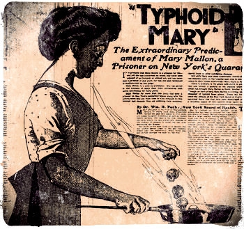 typhoid blog 1.jpg