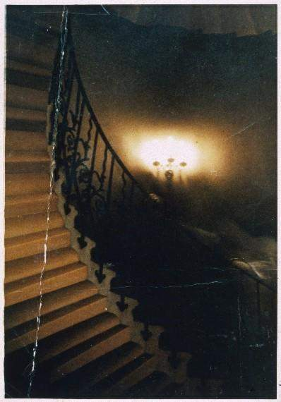 "Another fascinating photograph has been dubbed the ""Tulip Staircase Ghost."" It depicts a cowled figure that was photographed by a Canadian tourist, Reverend R.W. Hardy, who was visiting England in 1966. The photo was taken at Queen's House in Greenwich and it was intended to be solely of the grand Tulip Staircase there. When the photo was developed, the figure was seen, apparently climbing the stairs. The photo has been examined many times over the years, but thus far, has withstood all allegations of fraud."