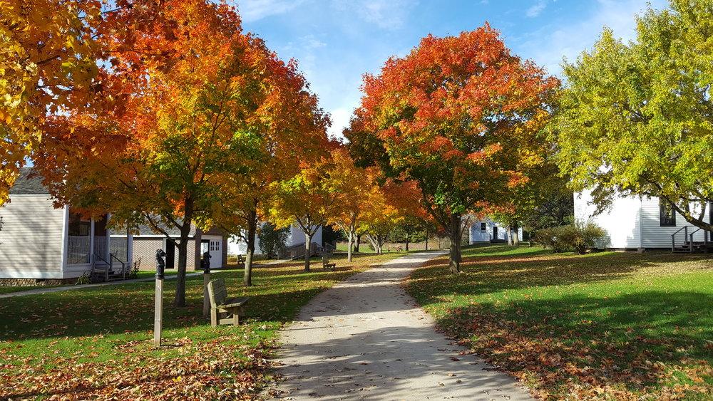 October Feature: Peak Fall Colors