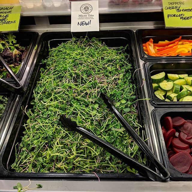 Our Micro Trio mix is now available at the Gibsons IGA salad bar! It's our house favorite microgreens combo of pea, sunflower, and radish shoots. #sohealthy @igagibsons @igastoresbc #sotasty #organic #healthy #localbusiness #sunshinecoastbc #farmtotable #saladbar #farmlife #bcfarms