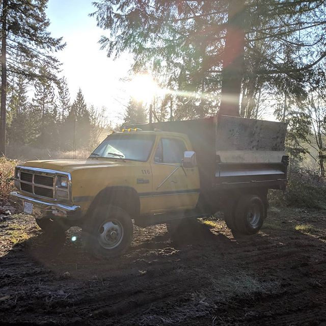Farm trucks rule. 1993 350 Dodge 5.9 12 valve Turbo Diesel with a hydraulic dump box. #farmlife #farmtruck #dodge350 #bigtrucks #turbo #5912 #sunshinecoastbc #geterdone #truck
