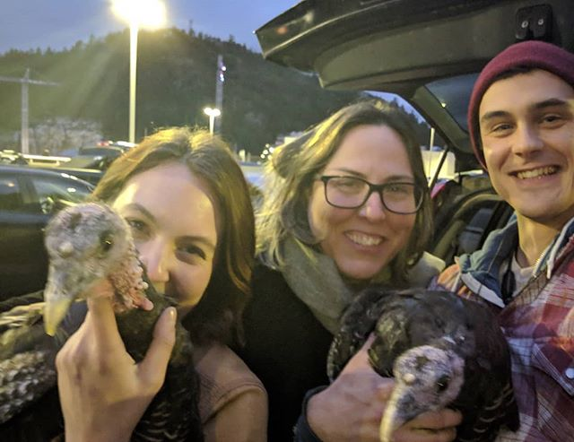A little turkey exchange in the ferry line up. How's you're Friday night?Raquel of @houghheritagefarm and @roundtable_farms staff Eric and Marlo finding new homes for a couple Ridley Bronze Hens. #farmlife #ridleybronze #turkey #bcferries #sunshinecoast #home #farmanimals #poultry #bird