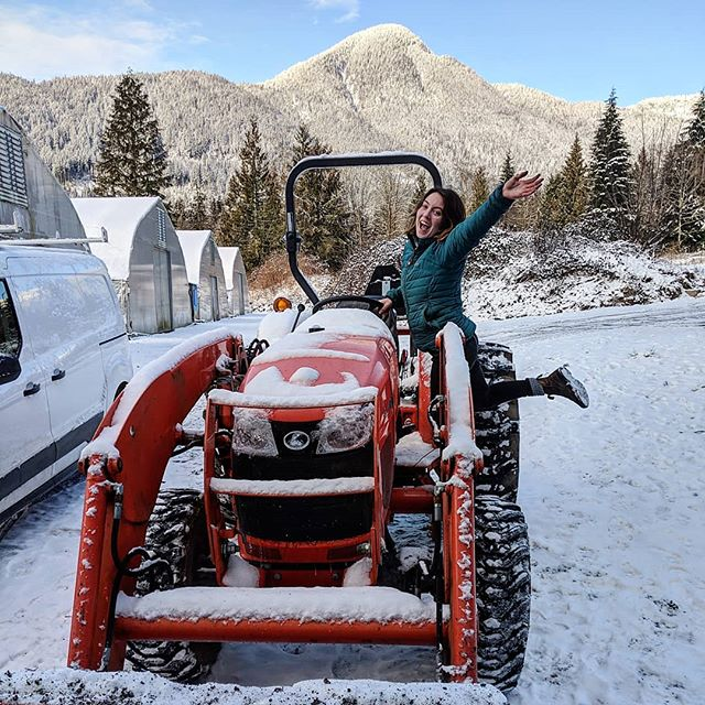 It's -7 and snowy but we're still smiling and growing micros! #polarvortex #farmlife #organicfoodbusiness #organicfarm #microgreens #snow #snowday #sunshinecoastbc #localfood #tractor #kubota