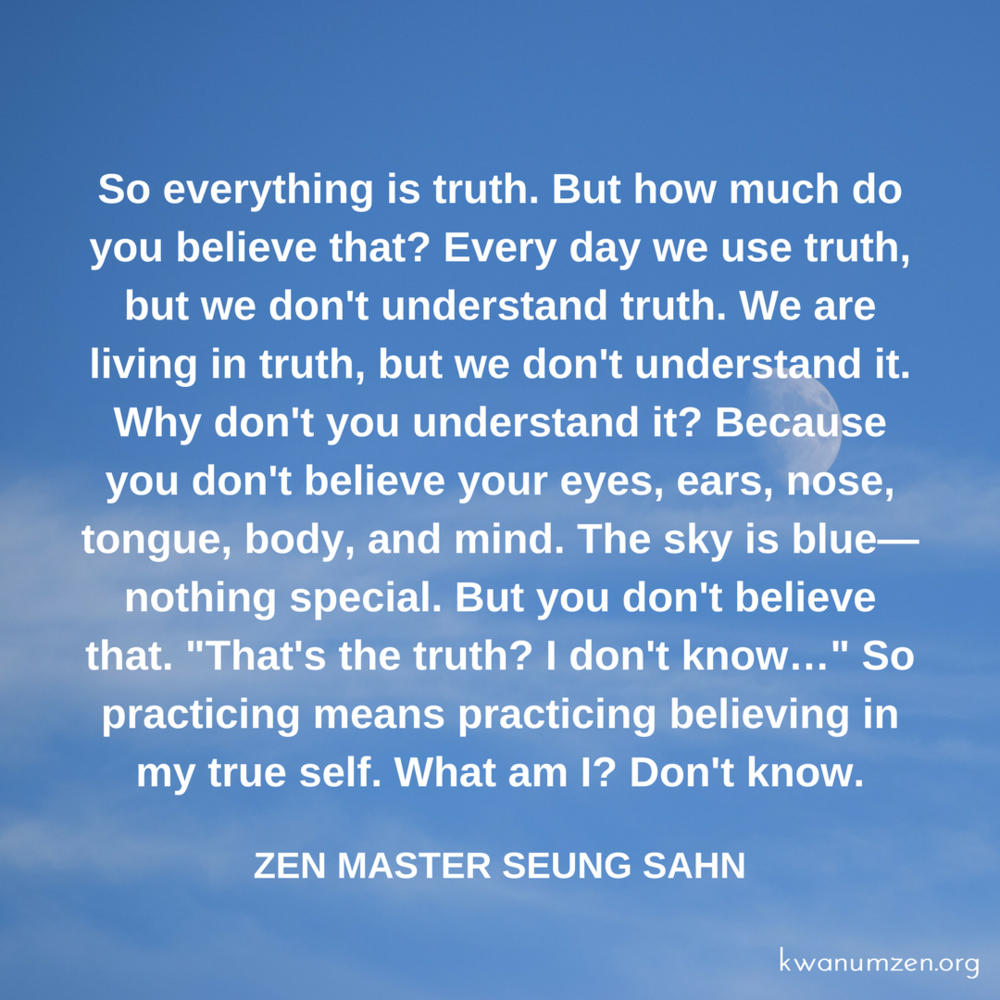 Everything_is_truth_ quote_ZMSS.png