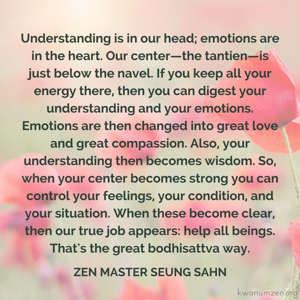 UnderstandandEmotions_quote_ZMSS.png