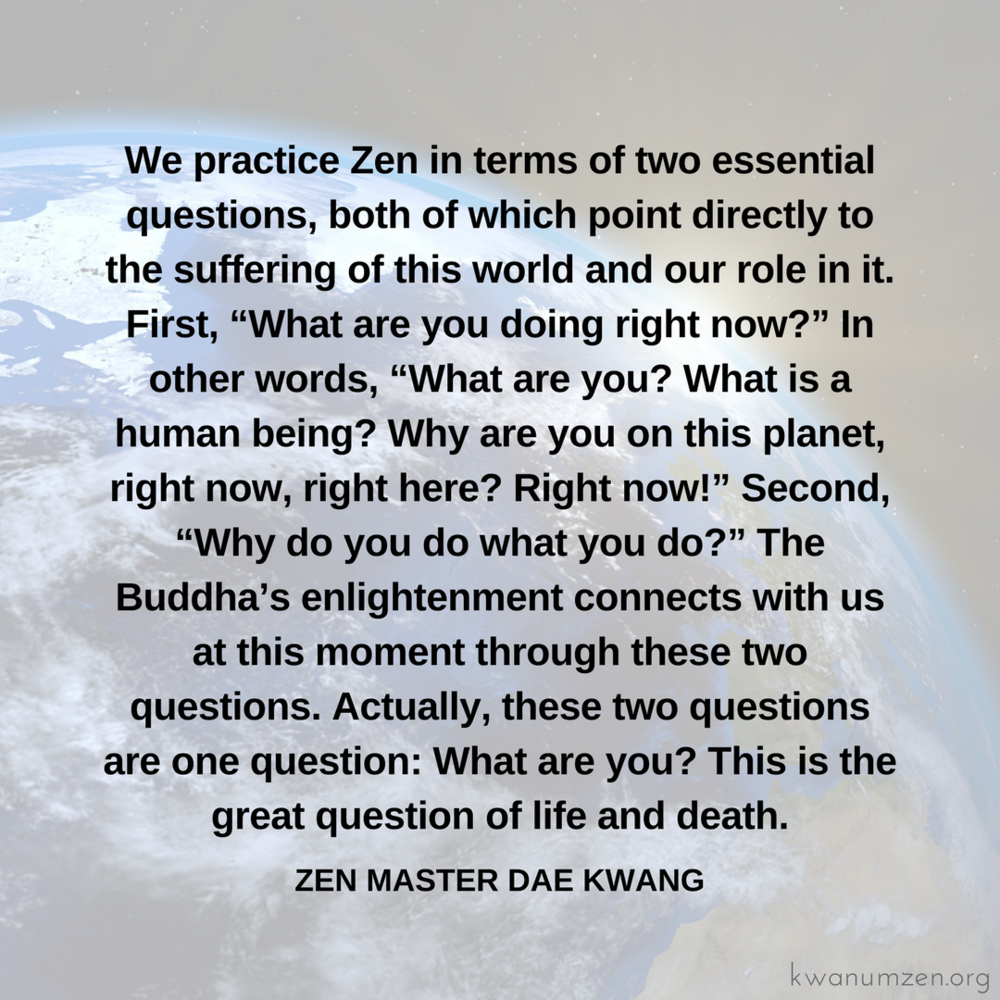 EssentialQuestions_quote_ZMDaeKwang.png