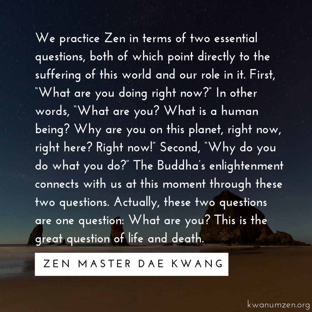 TwoQuestions_quote_ZMDaeKwang.png