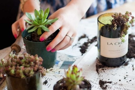 Wine-Bottle-Succulent-Planters-550x309.jpg