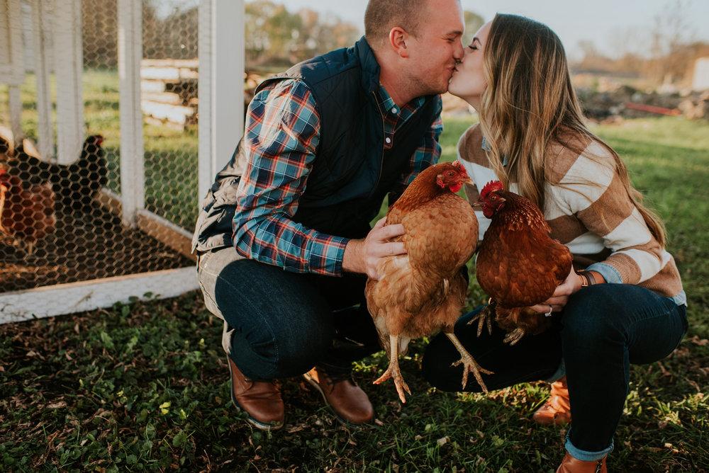 chickens(8of173).jpg