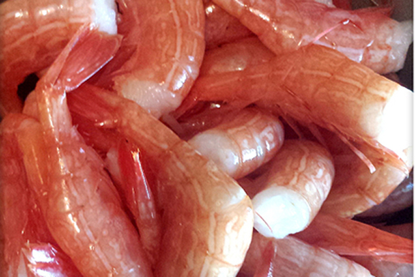 WILD SIDESTRIPE SHRIMP Caught off our west coast. Slightly softer than our spot prawn. A delicate, clean flavour with a prominent sweetness. Fished all year long. The majority of these are caught, headed and frozen in water blocks right on the boat.