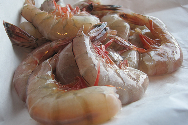 WILD SEATIGER PRAWNS A warm water prawn slightly more tender than other prawns with a flavour similar to lobster. Shells are slightly softer and easier to peel than other prawns.