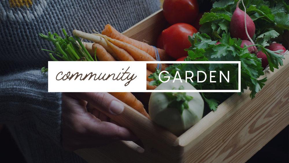 COMMUNITY-GARDEN-2018-WEB.jpg
