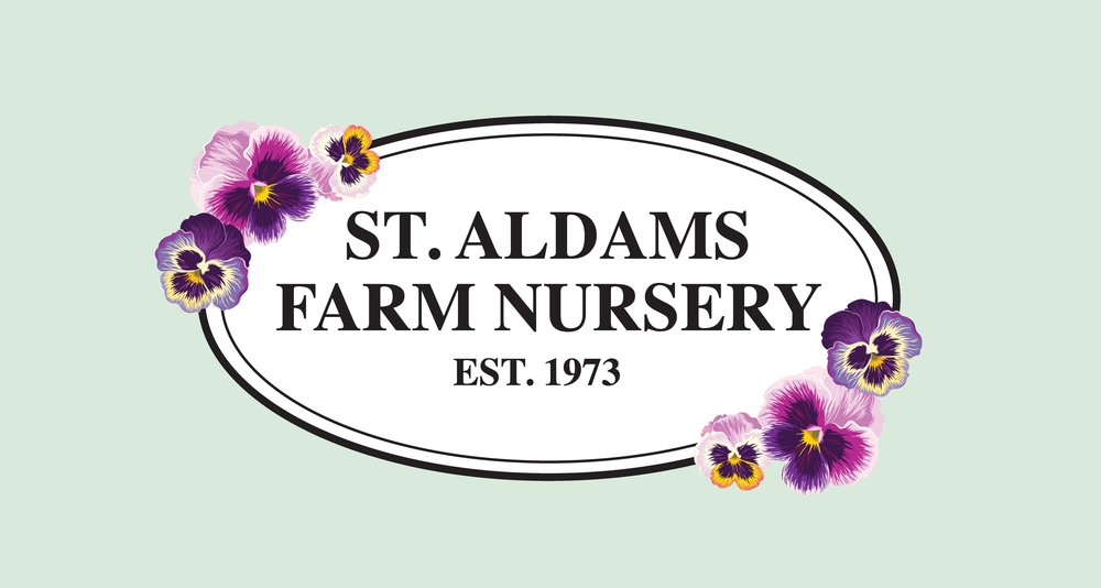 ST ALDAMS_LOGO_GREEN BACKGROUND (1)-page-001 (1).jpg