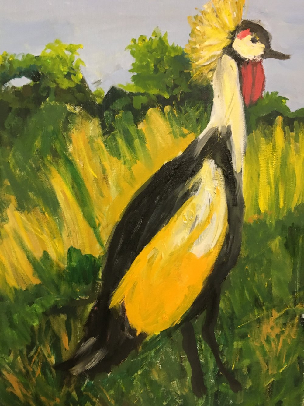Yellow-Crested Crane