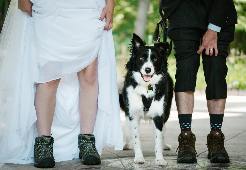 kalamazoo-michigan-elopement-photographer (3).jpg