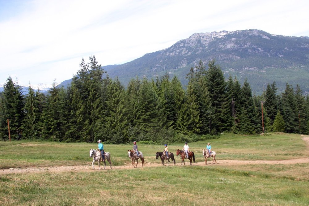 A group horseback riding through a grassy field in front of mountains in Pemberton