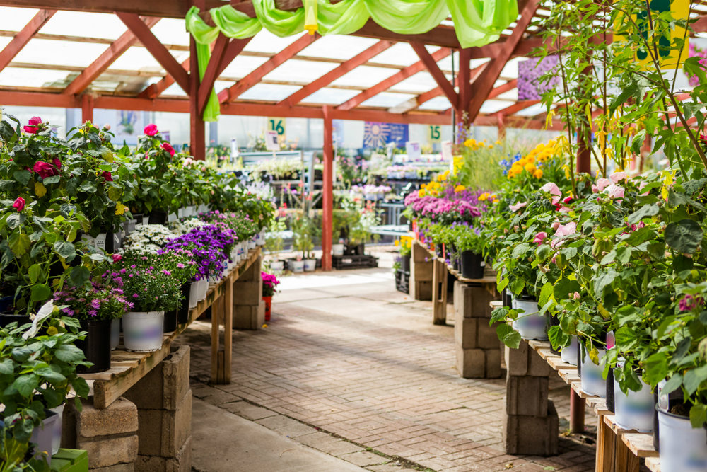 Visit Our Garden Center in the Sussex County NY Area for Year-Round Color