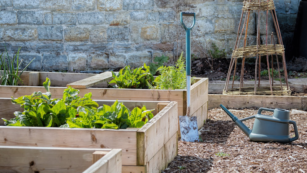 Our Garden Center's Tips for Beautiful Raised Planting Beds in the Ulster County, NJ, Area