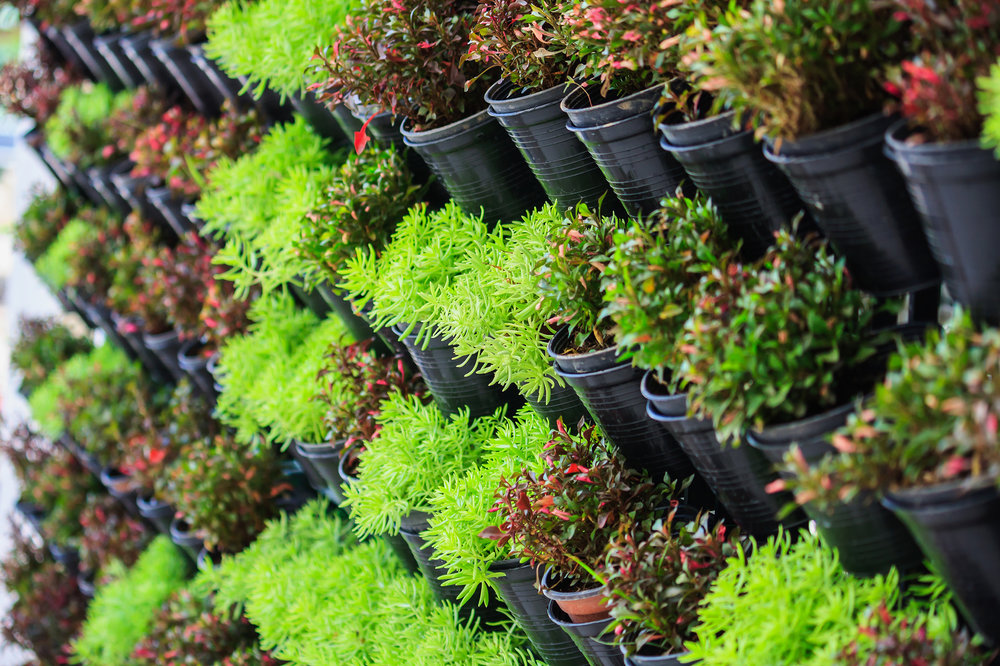 4 Essential Landscape Materials for Your Vertical Garden Project in Sullivan County, NY