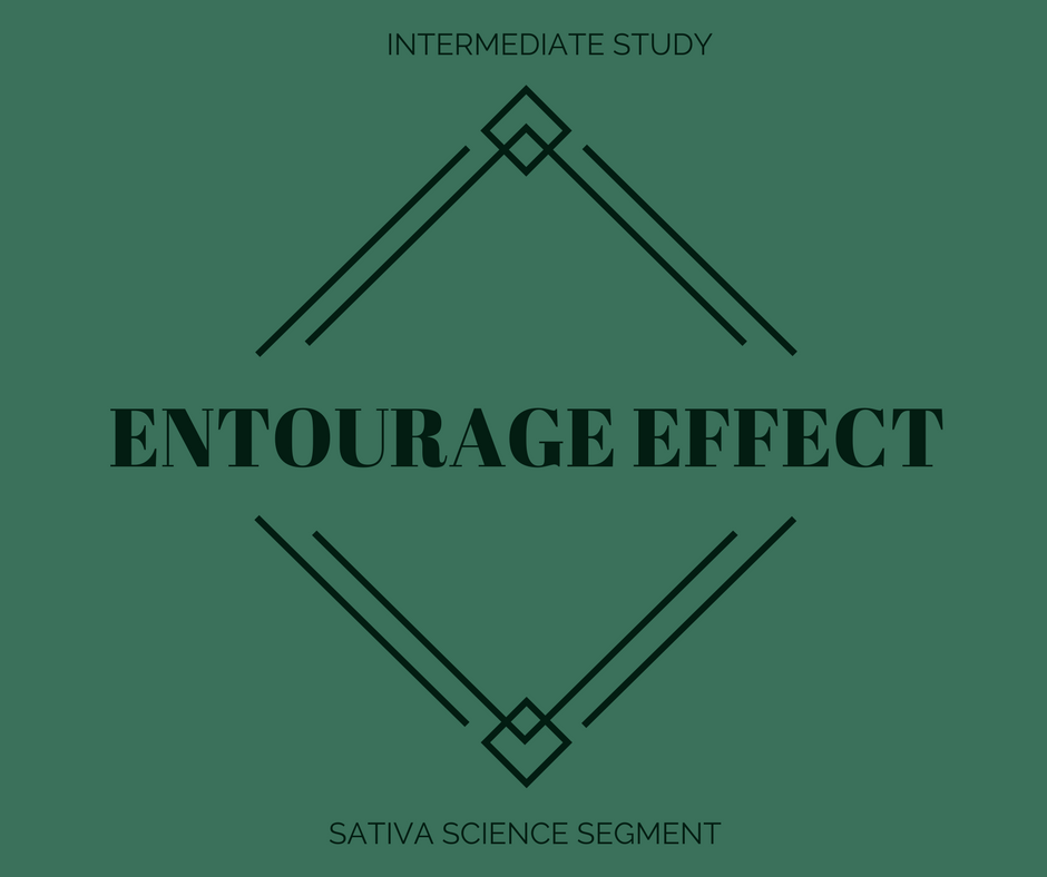 ENTERAGE EFFECT.png
