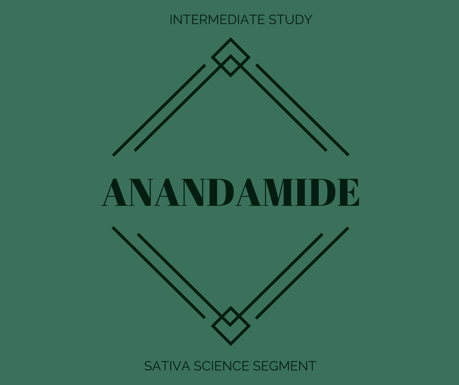 ANANDAMIDE.png