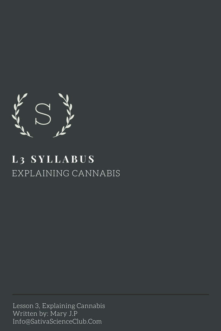 S5L3 Syllabus.png