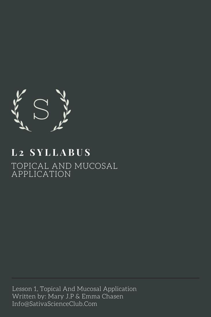 S4L2 Syllabus.png