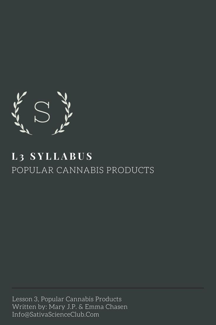 S4L3 Syllabus.png
