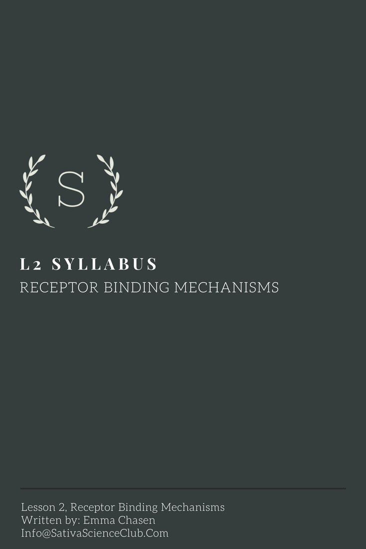 S3L2 Syllabus.png