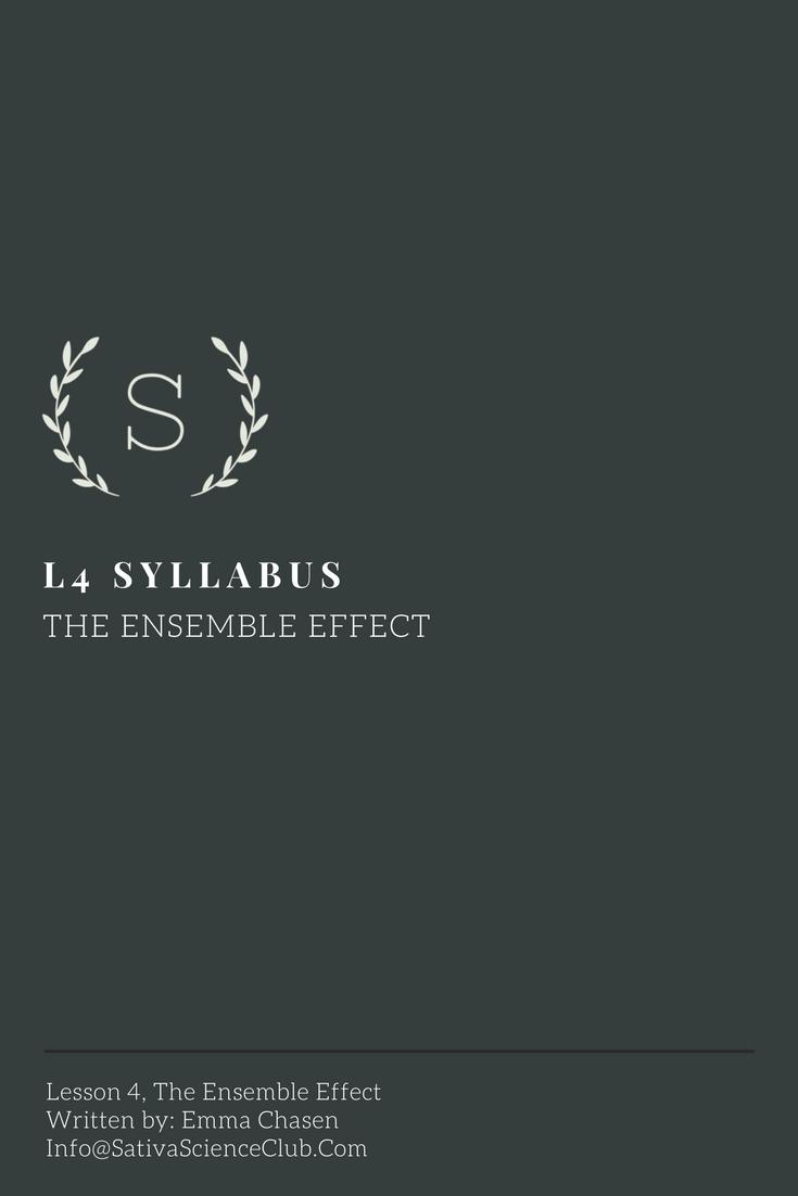S3L4 Syllabus.png