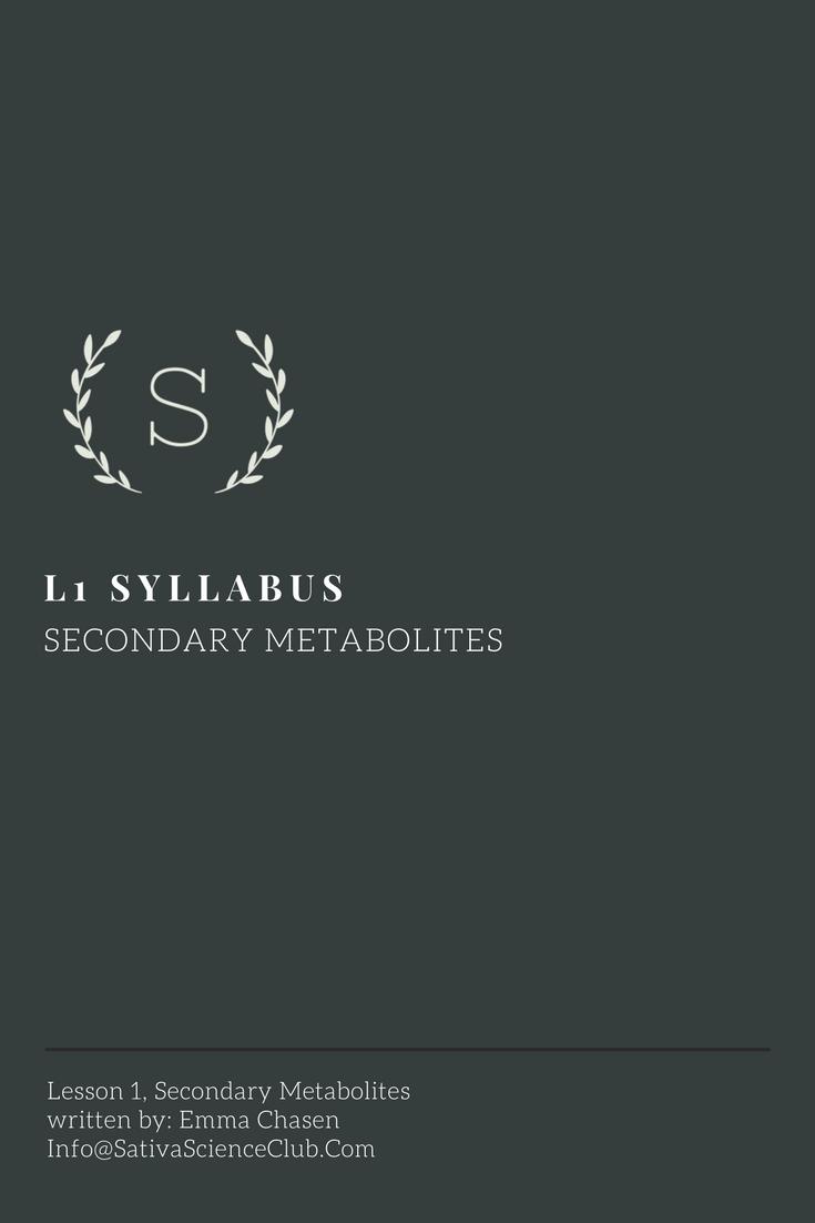 S2L1 Syllabus.png