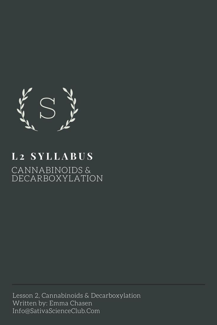 S2L2 Syllabus.png