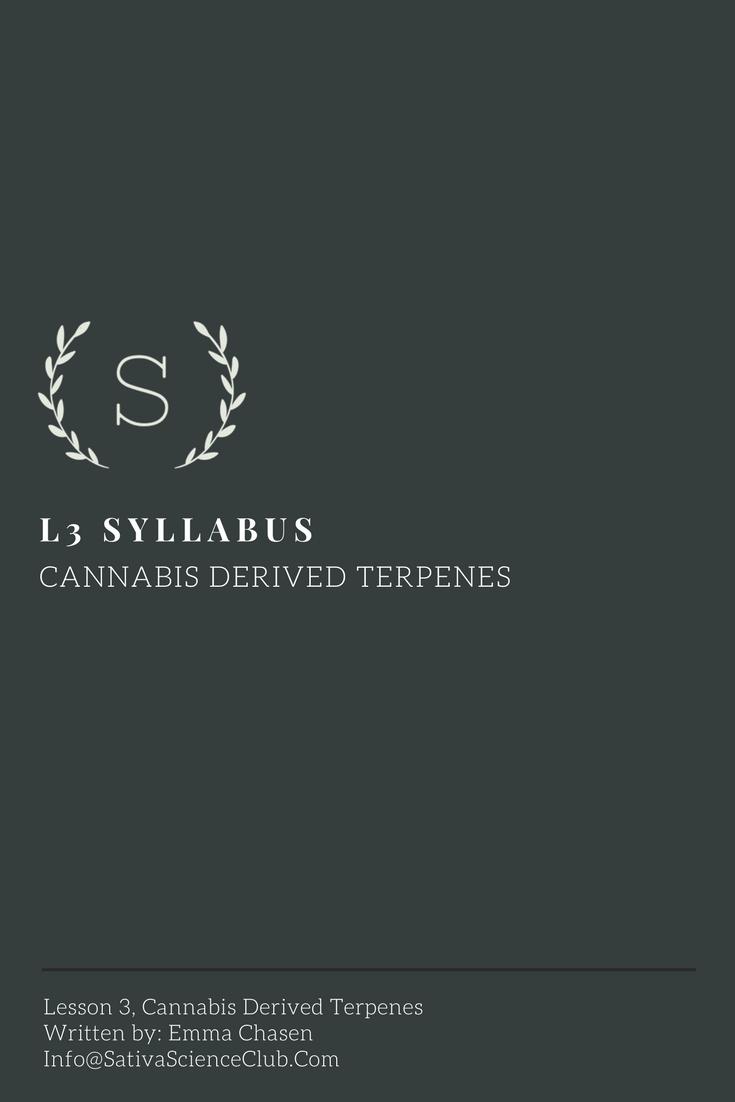 S2L3 Syllabus.png